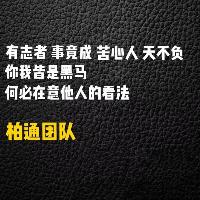 柏通网络公司